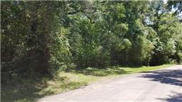 Lot 17 Creekbend, Hockley, TX, 77447