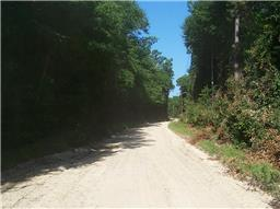tbd county road 4420, spurger, TX 77660