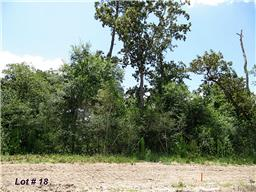 Houston Home at 133 Kings Lake Estates Boulevard Humble                           , TX                           , 77346 For Sale