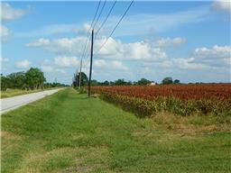 0 beasley west end road, beasley, TX 77417
