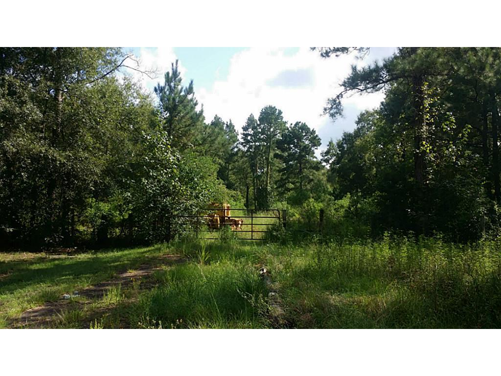 TBD Lot3 Firetower, Conroe, TX 77301