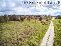 Houston Home at Lot 91 Victoria Drive Bedias , TX , 77831 For Sale